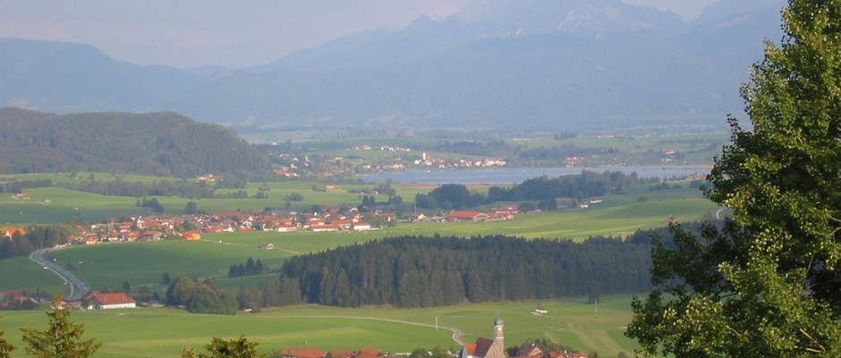 Landschaft (37)